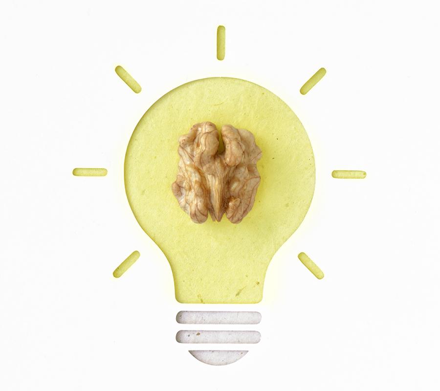 orzechy-witamin-składników-mineralnych-przyswajania-wiedzy-wspomaga-pamięć